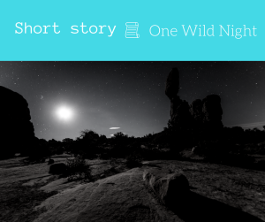 One Wild Night - 3 minute short story prose and pose short story blogger