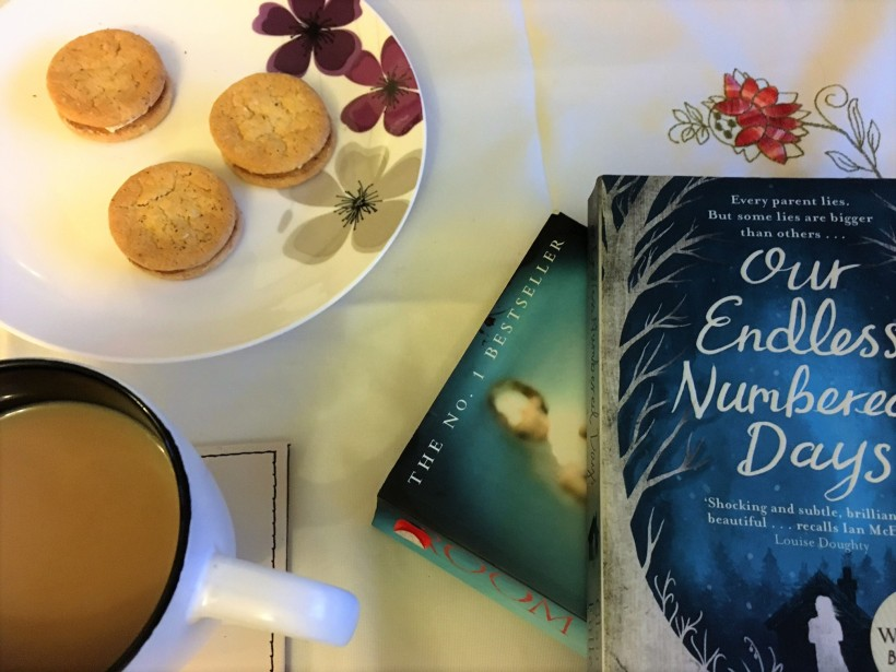 Endless Numbered Days review by Claire Fuller | book review blog